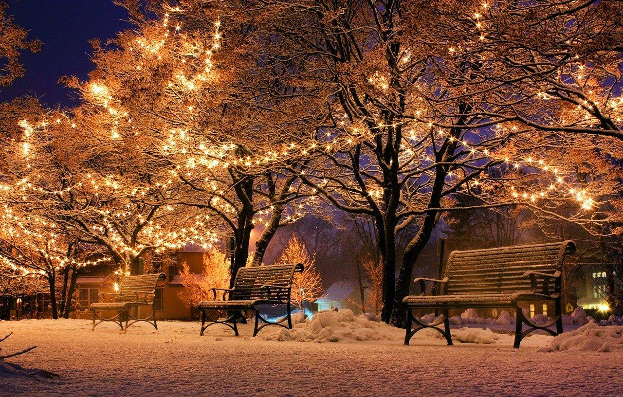 bank, christmas, light